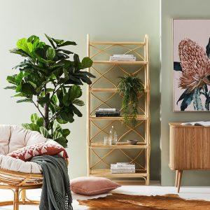 5 Tiered Bookshelf